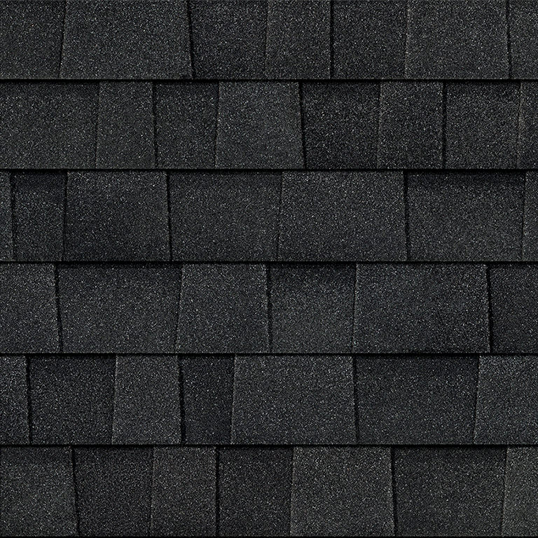 Onyx Black roof tile
